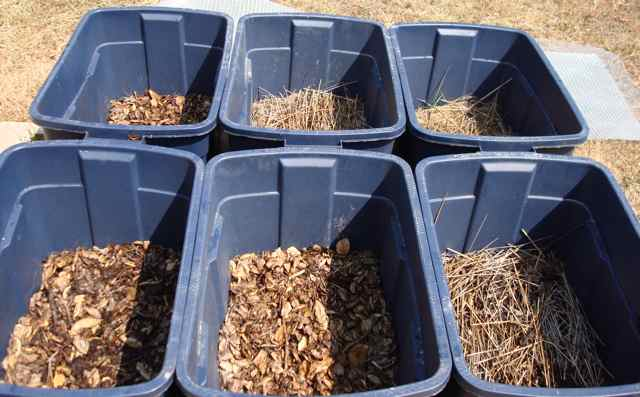 Thatch and Leaf Litter Trial (Week 5)